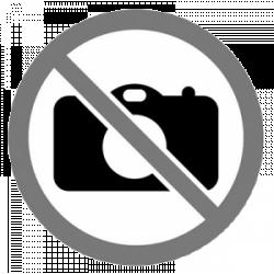 Canon Szkenner P208 II