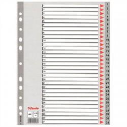 Regiszter, műanyag, A4, 1-31, ESSELTE, szürke
